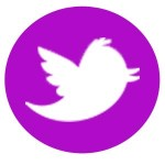 Fucshia Twitter Logo